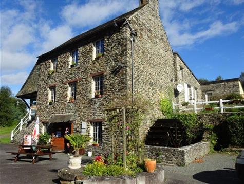 Très belle propriété : Moulin, appartement sur parc de 4 hectares
